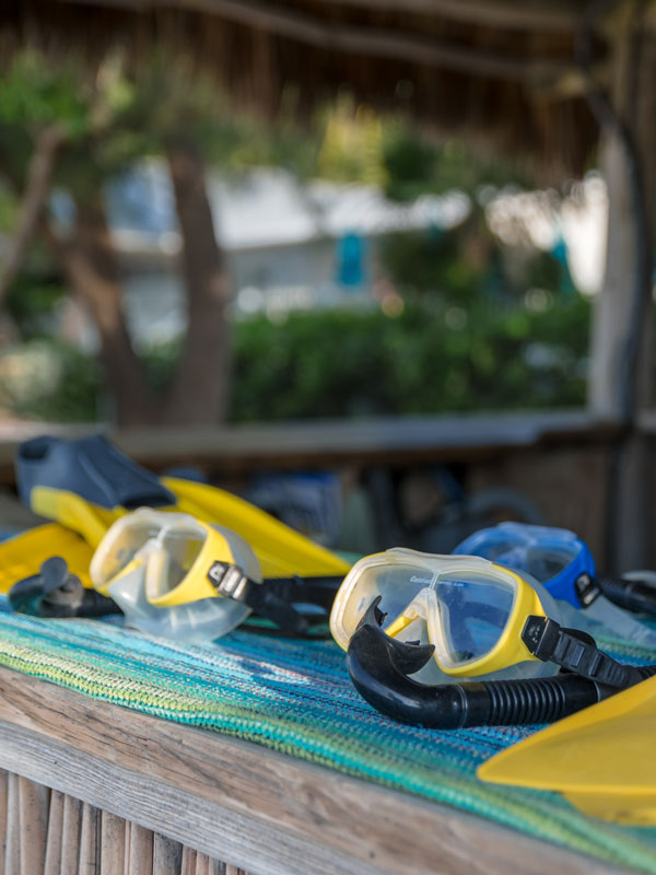 photo of snorkel masks and fins.